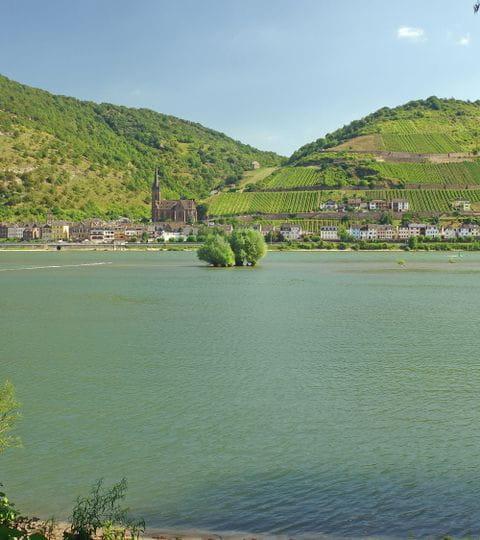 Rad und Schiff Rhein
