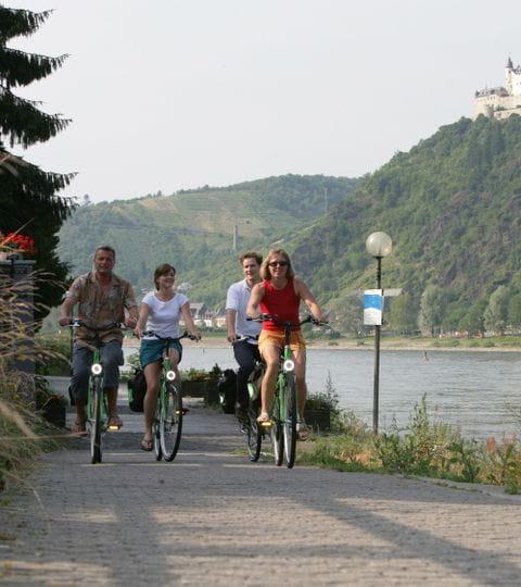 Radurlaub am Rhein-Radweg