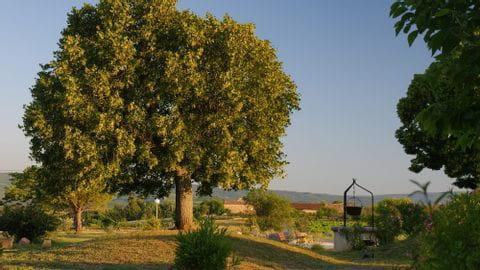 Radurlaub Provence Sternfahrt