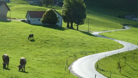 Radreisen Schweiz