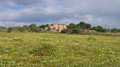 Radreise Mallorca