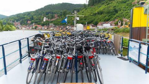 Sonnendeck Räder MS Allure
