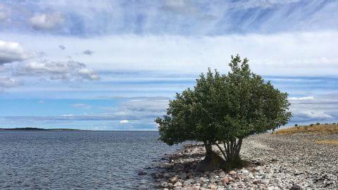 Radurlaub Gotland
