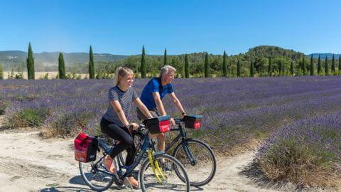 Radreisen Lavendel Provence