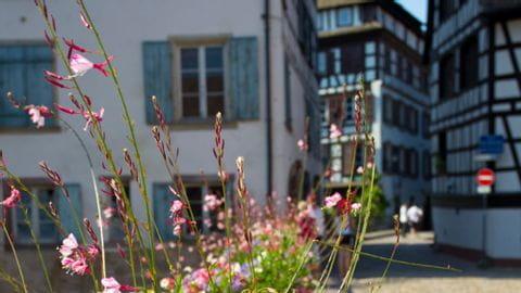Radreise Strassburg Luxemburg