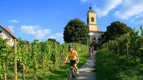 Biketour Mur cyclepath