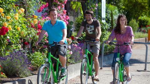 Bike Tour Rhine