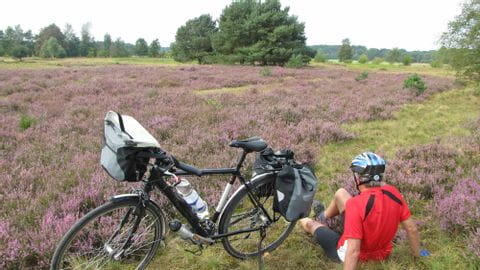 Bike Tour Lüneburger Heide