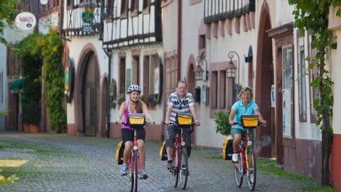 Radreise Pfalz Sternfahrt