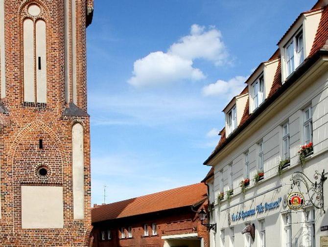 Radreisen Elbe