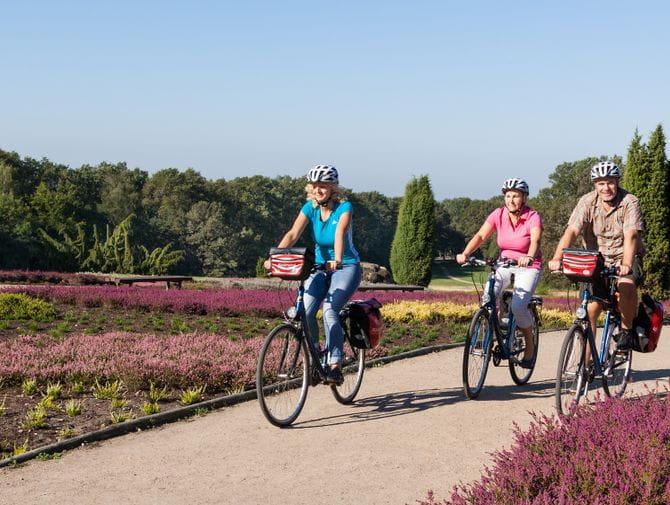 Bike Tour Lüneburger Heide