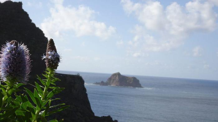 Fahrradreise Madeira